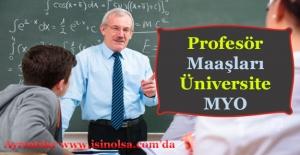 Profesör Maaşları Ne Kadar! (Üniversite - Meslek Yüksek Okulu)