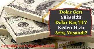 Dolar Sert Yükseldi! Yeniden Rekora Doğru Artıyor!