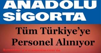 Anadolu Sigorta Yüzlerce Personel Alıyor!