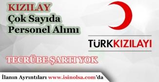 Türk Kızılayı Tecrübe Şartı Olmayan Çok Sayıda Personel Alımı Yapıyor