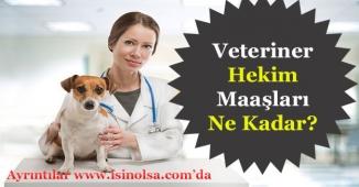 Veteriner Hekim Maaşları Ne Kadar? Bölgelere Göre Maaşları