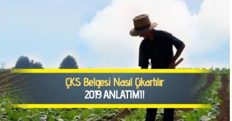 Çiftçilik Belgesi (ÇKS) Nasıl Alınır: 2019 Güncel Anlatım