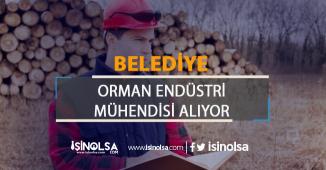 Belediye Orman Endüstri Mühendisi Alım İlanı Yayımladı!