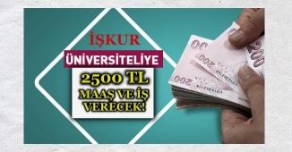 İŞKUR Üniversiteliye 2500 TL Maaş ve İş Verecek