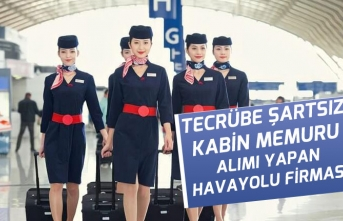 Tecrübe Şartsız Lise Mezunu Kabin Memuru Alımı Yapan Hava Yolları Firmaları
