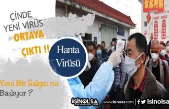 Çin'de Yeni Virüs: Hanta- Hanta Virüsü Nedir?