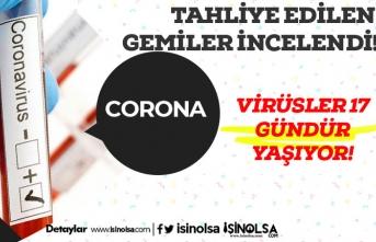Corona Virüsü 3 Gün Değil 17 Gün Cansız Yüzeylerde Yaşayabiliyor
