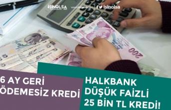 Halkbank 6 Ay Geri Ödemesiz 25 Bin TL Kredi Başvurusu Alacak! Başvuru Şartı!