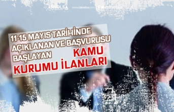 11-15 Mayıs İŞKUR'da Başvurusu Başlayan Kamu Kurumu Memur Alım İlanları!