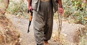 PKK Militanları En Sonunda Bunu da Yaptı!