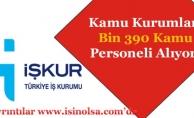İŞKUR TYP Kapsamında Kamuya Bin 390 (1390) Kamu Personeli Alınıyor!