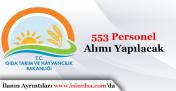 Gıda Tarım ve Hayvancılık Bakanlığı 553 Personel Alımı Yapacak