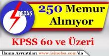 TEDAŞ 250 Kamu Personeli Alımı Yapıyor