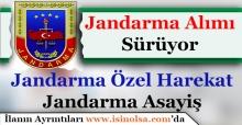 Jandarma Özel Harekat ve Asayiş Jandarma Alımları Sürüyor