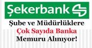 Şekerbank Şube ve Müdürlükler İçin Çok Sayıda Memur Alımı Yapıyor!