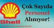 Shell Petrol Çok Sayıda Personel Alıyor!