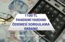 1100 TL Tam Kapanma Pandemi Sosyal Yardımı E-Devlet...