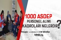 1000 ASDEP Alımında Muhtemel Kadrolar ve Başvuru Şartları
