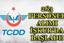 TCDD 263 Personel Alımı İŞKUR Üzerinde Başvruları Başladı! İşte Kadrolar