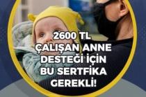 SGK'lı Çalışan Annelere 2600 Tl Destek İçin Bu Sertifikayı Almak Gerekiyor!