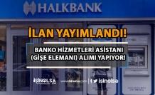 Halkbank Banko Hizmetleri Asistanı (Gişe Elemanı) Alım İlanı Yayımladı!