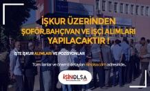 4 Belediye KPSS Şartsız 32 Şoför, Bahçıvan, İnşaat Teknikeri ve İşçi Alımı Yapıyor!