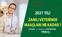 Veteriner Maaşları 2021 Temmuz Son Zam Eklemeleriyle Ne Kadar Oldu ?