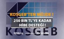 İş Kurmak İsteyenlere Hibe Desteği Verilecek!!! Verilecek Hibe Desteği 250 bini Geçiyor!!!
