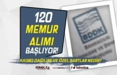 BDDK 120 Memur Alımı Başvurusu Başladı! Kadro Dağılımı ve Özel Şartlar Nedir