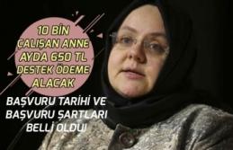 Bakanlıktan Çalışan Annelere Müjde 10 Bin Kişi Ayda 650 Tl Ödeme Alacak!