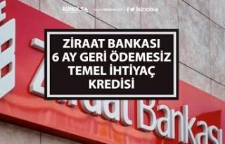 6 Ay Geri Ödemesiz Ziraat Bankası Bireysel Temel...