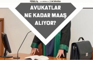 Kamu Avukatı Nasıl Olunur? Kamu ve Özel Avukat...