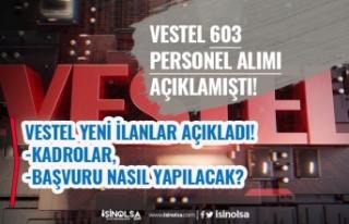 Vestel 603 Personel Alımı Açıklamıştı! İlanlar...