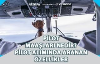 2020 Pilot Maaşları Ne Kadar? Pilot Alımı Aranan...