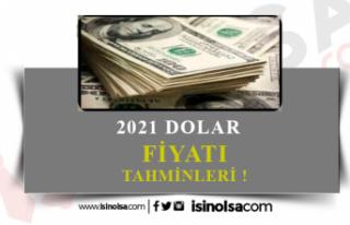 2021 Dolar Tahmini Ne Kadar? Uzmanlar Ne Diyor?