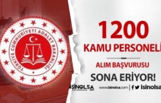 Adalet Bakanlığı 1200 Kamu Personeli Alımı Başvurusu...