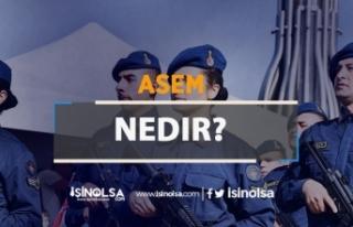 ASEM Nedir?