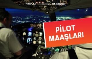 Pilot Nasıl Olunur? Aranan Özellikler 2020 Pilot...