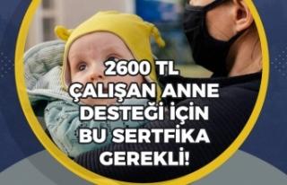 SGK'lı Çalışan Annelere 2600 Tl Destek İçin...