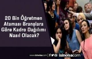 20 Bin Öğretmen Ataması Branşlara Göre Kadro...