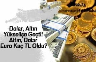 Dolar, Altın Yükselişe Geçti! Altın, Dolar ve...