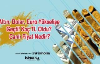 Altın, Dolar, Euro Yükselişe Geçti! Kaç TL Oldu?...