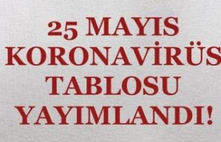 Vaka Sayısı Yine Yükseliyor! 25 Mayıs Koronavirüs...