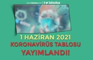 Haziran Ayı İlk Korona Virüs Tablosu Yayımlandı!...