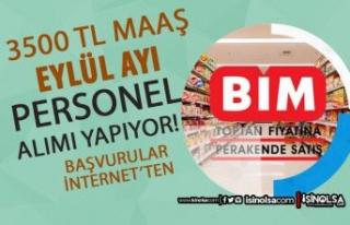 BİM ve FİLE 3500 TL Maaş İle Eylül Ayı Personel...