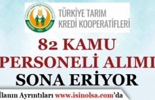 Tarım Kredi Kooperatifleri 82 Kamu Personeli Alımı...