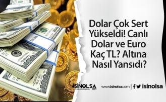 Dolar Çok Sert Yükseldi! Canlı Dolar ve Euro Kaç TL? Altına Nasıl Yansıdı?
