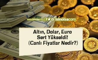 Altın, Dolar, Euro Sert Yükseldi! (Canlı Fiyatlar Nedir?)