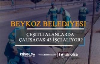 İstanbul Beykoz Belediyesi 43 İşçi Alıyor
