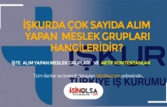 İŞKUR'da Başvuruya Açılan, Çok Sayıda Alımı Yapan Meslek Grupları
